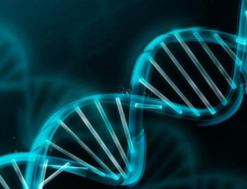 Enfermedad celíaca y genética